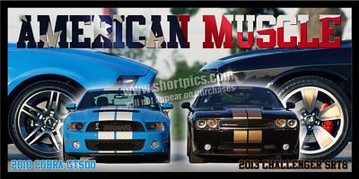 12X24 COBRA AND CHALLENGER AMERICAN MUSCLE