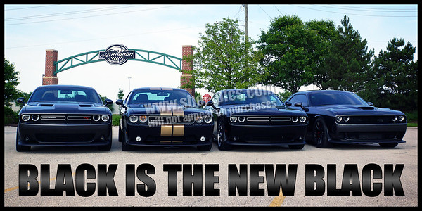 Black is the New Black 12x24