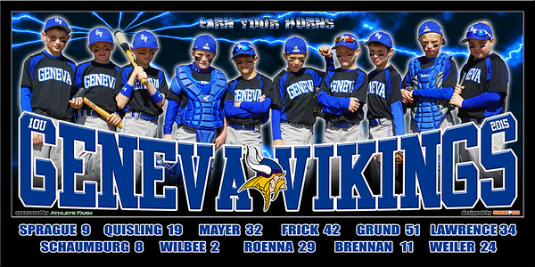 2015 10U Geneva Vikings Team Poster