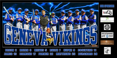 2016 10U Hupke Geneva Vikings Team Banner Option