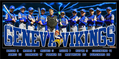2016 10U Hupke Geneva Vikings Team Banner w Player Names