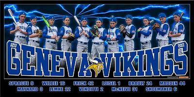 2017 12U Wilbee Geneva Vikings Team Poster