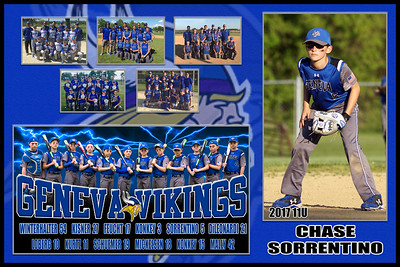 2017 11U Feucht Geneva Vikings Team Player Poster SORRENTINO