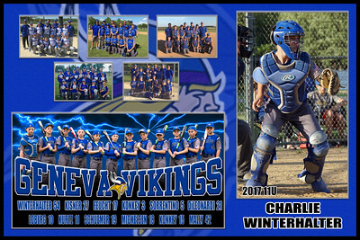 2017 11U Feucht Geneva Vikings Team Player Poster WINTERHALTER