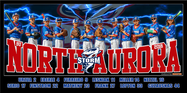 2018 9U North Aurora Storm Team Print