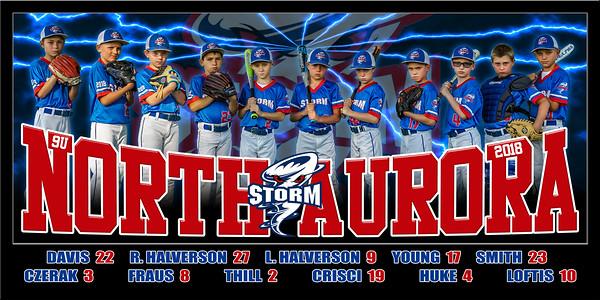 2018 9U North Aurora Storm Halverson Team Print