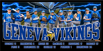 2018 11U Homewood Vikings Team Poster