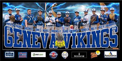 2019 11U Kastor Geneva Vikings Team Banner Full Team w Lightning