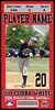 Pony Cobra Baseball Ticket