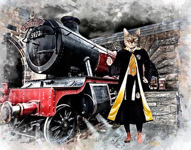 11x14 Kairi Hufflepull Train Print