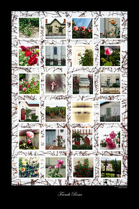 French Roses, 24x26 with black border