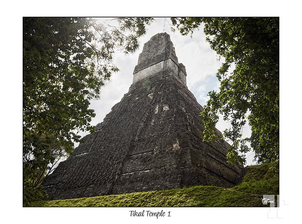 Tical Mayan Temple