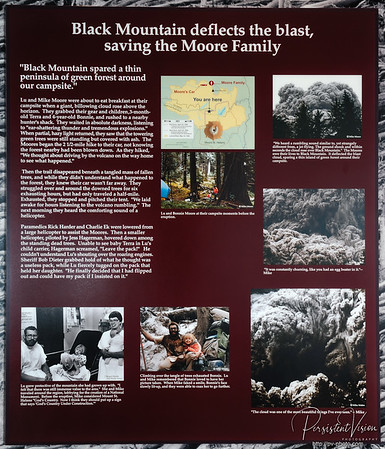 Black Mountain deflects the blast, saving the Moore Family (Sign)