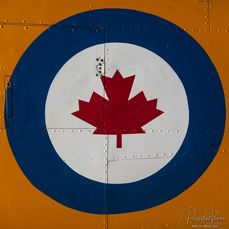 Standard Canadian Air Force Roundel