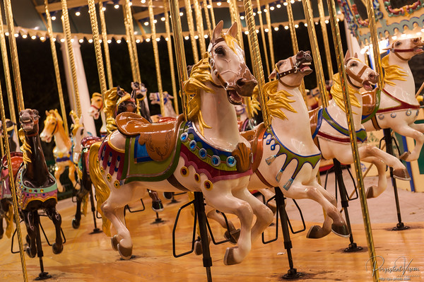 Grand Carousel Horse at night
