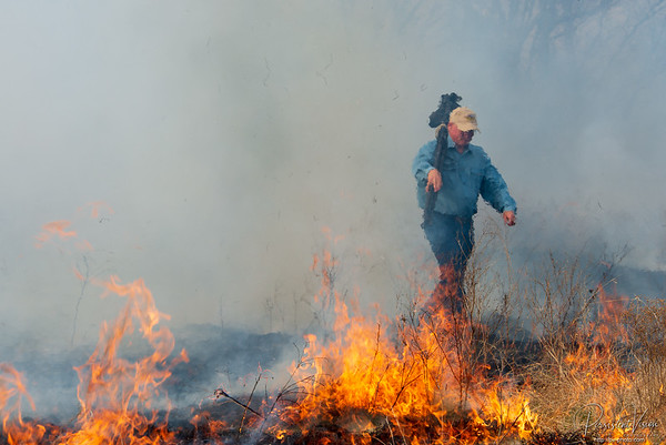 Photographer Walks Through Burning Grass
