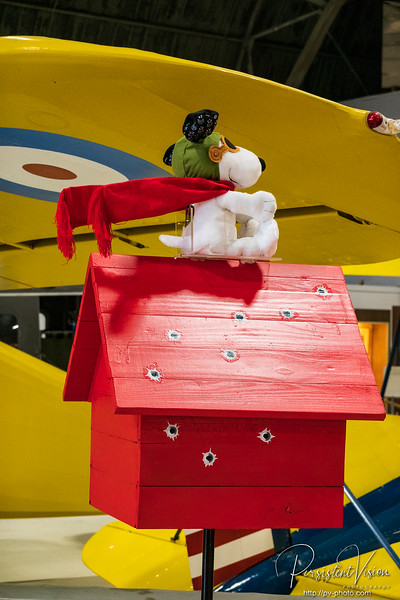 Snoopy and Flying Dog House