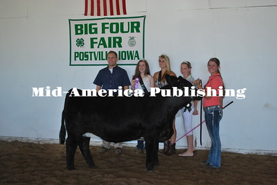 Results Big 4 Fair 2015