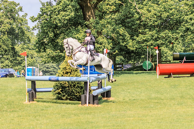 Houghton Horse Trials Norfolk - b