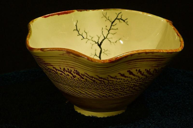 Branch Bowl by Tom