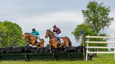 Potomac Hunt Races 2017