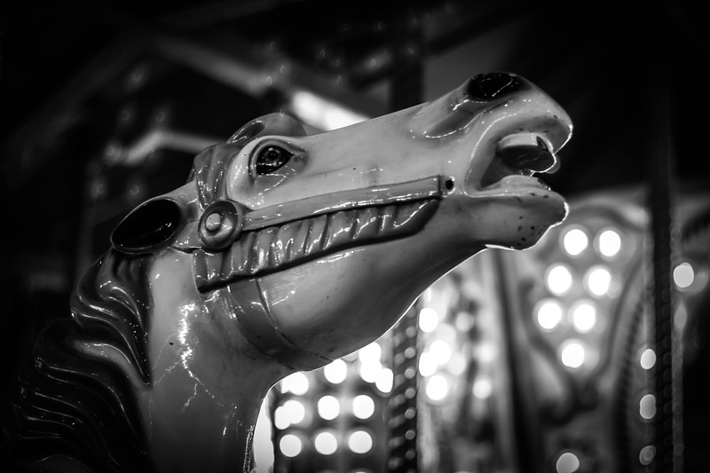 Black and White Carousel Horse