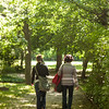 Strolling women, Tatabanya