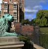 Lion Guarding Rosenborg