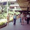 Tom Osborne, University of Nebraska football players and coaches -  Hawaii, December 1971