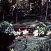 Bellingreth Gardens, Mobile, AL - Trip to Southeast, December 1975