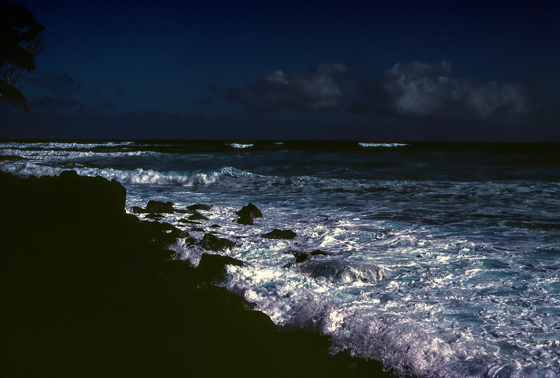 Coastline, Hawaii, November 1982