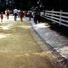 Mt Vernon, Virginia - August 1971