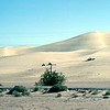 Sand Dunes west of Yuma, Trip to San Francisco, San Diego and Phoenix, December 1978