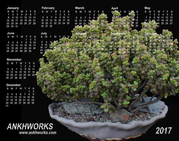 Ankhworks 2017 calendar
