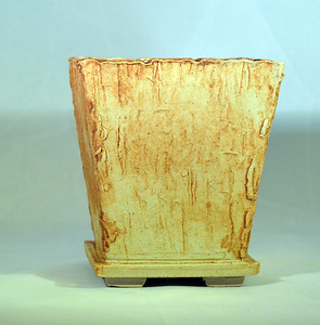 Iron oxide on petrified wood impressed pot 4.25 x 4.25 x 5 sold