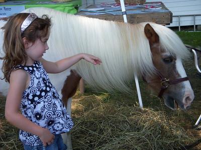 2008-Dutchess County Fair