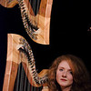 New harp player joins Calan