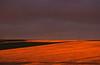 Paysage de la réserve de Fort Peck au soleil couchant. Etat du Montana/USA