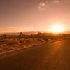 Joshua Tree Desert Road