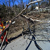 KRISTOPHER RADDER - BRATTLEBORO REFORMER<br /> Matt Fisk, with the New Hampshire Department of Transportation, cuts up a tree on Route 9, in Chesterfield, N.H., on Thursday, April 5, 2018.