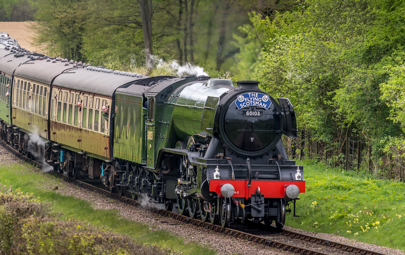 The Flying Scotsman northbound at the Bluebell Railway