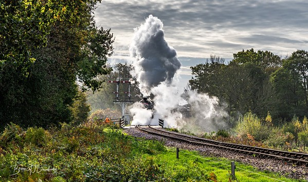 Bluebell Railway - Giants of Steam-87440-Edit