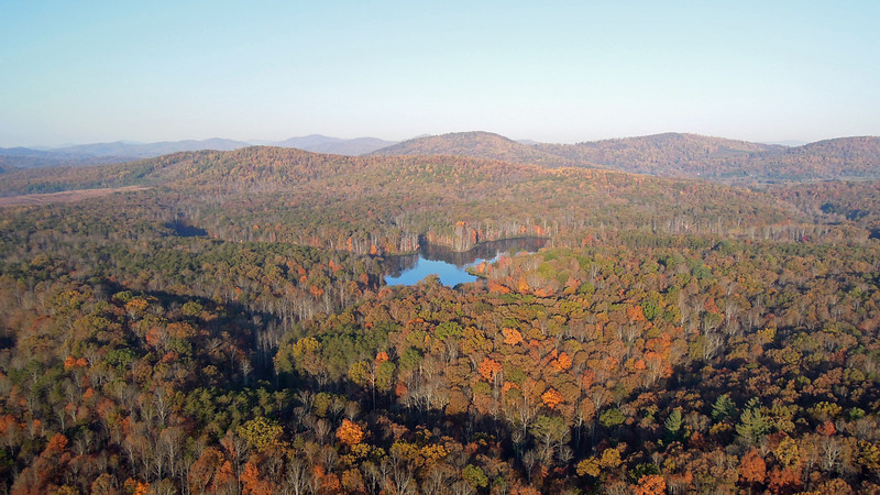 Fall colors, Blue-Ridge Mountains