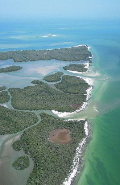 Mangrove islands, Florida
