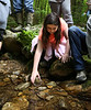 HOLLY PELCZYNSKI - BENNINGTON BANNER Fifth grader Alexis Morris releases her trout into Broad Brook on Thursday morning in Pownal.