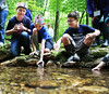 HOLLY PELCZYNSKI - BENNINGTON BANNER Fifth grader Henry Steinhoff, Elijah Amidon, and Gavin Lindsay release Brook trout back into the wild on Broad Brook in Pownal on Thursday morning.