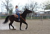 Prado Equestrian Center and Shamrock Morgans - www.pradoequine.com - (909) 597-5757 : 22 galleries with 6508 photos