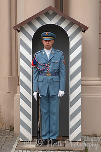 Prague Castle guard