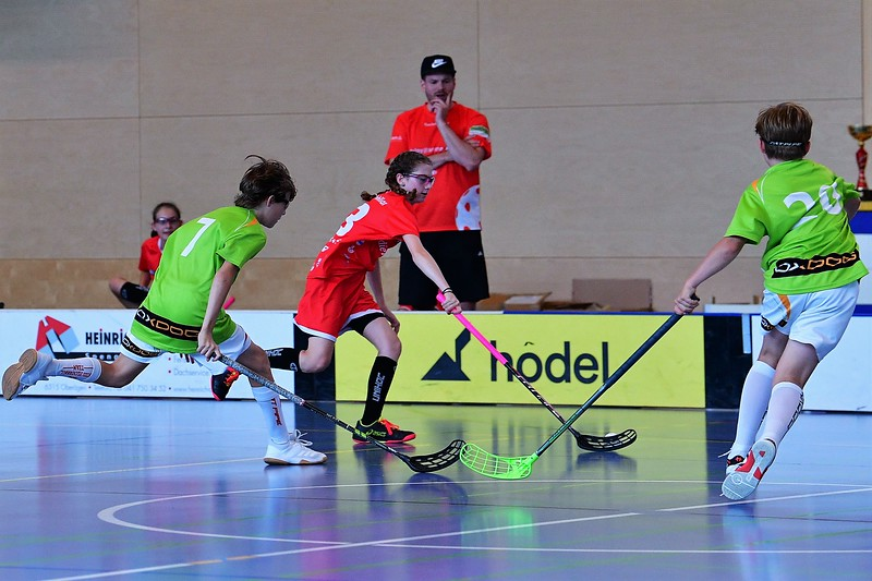 B12 Thurgau - ZPGD G14 red 18