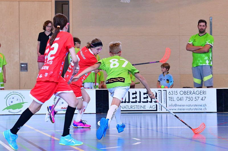 B12 Thurgau - ZPGD G14 red 13